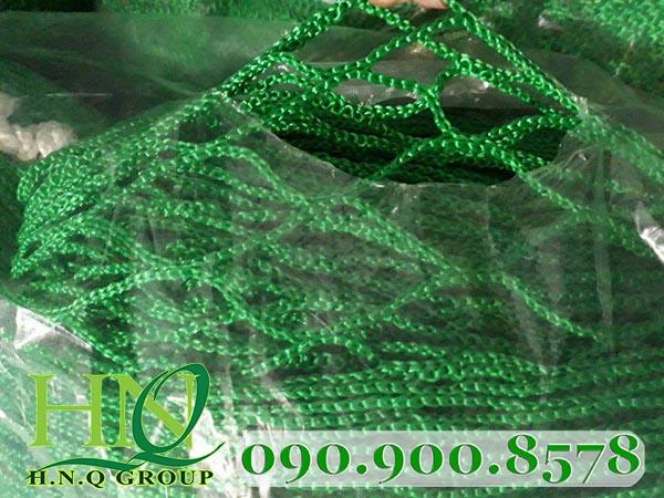 lưới an toàn hàn quốc 5cm green