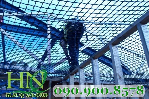 lưới an toàn hàn quốc