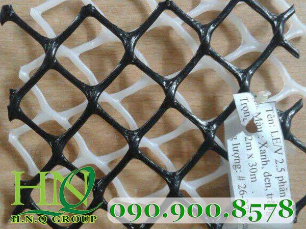 lưới nhựa 2.5cm