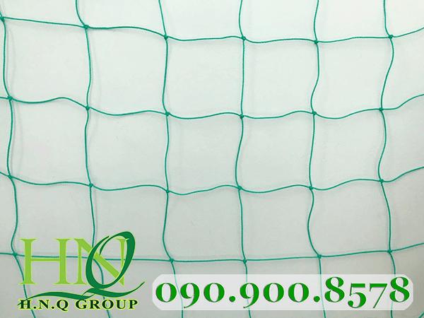 Lưới vây sân bóng đá 3mm