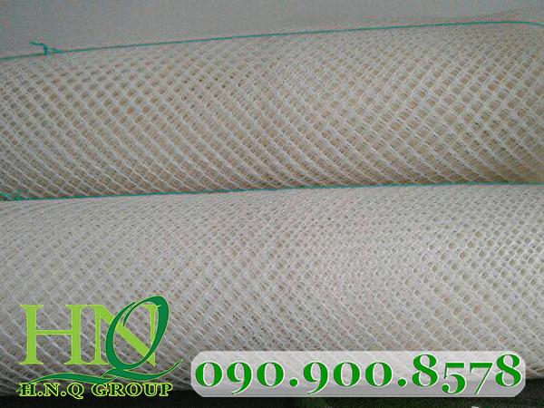 Lưới ép nhựa 1cm